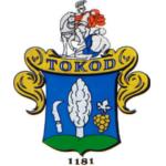 tokod_1